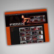 020_strona-fenix
